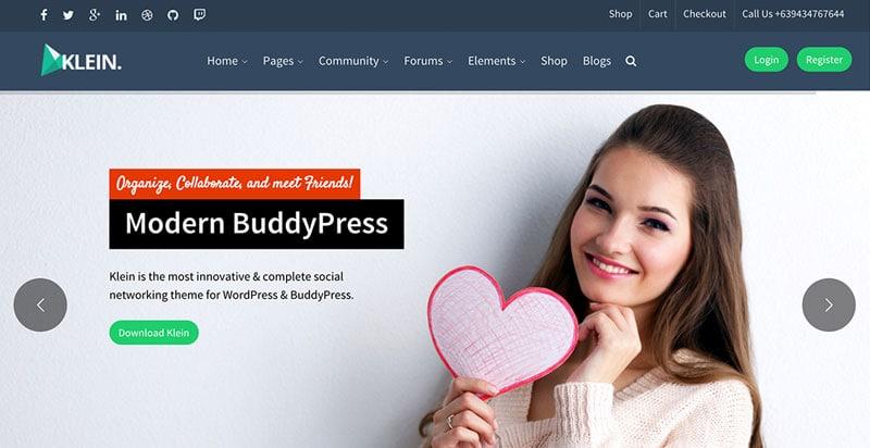 Klein BuddyPress Theme