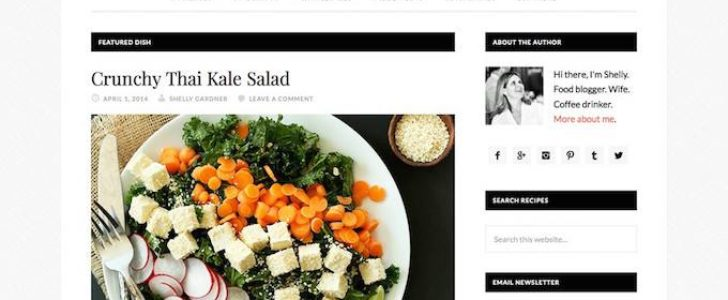 Daily dish, Blogging Theme, WordPress Theme