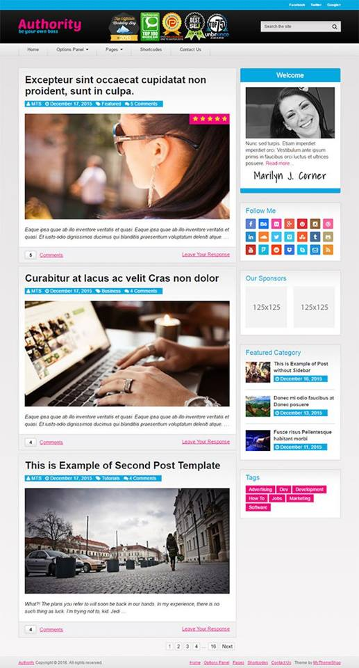 Authority, Blogging theme, bloggers, WordPress Theme