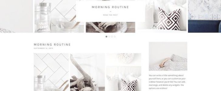 Simply pro, Blogging theme, WordPress Theme