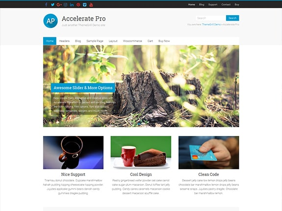 Accelerate Pro WordPress Theme