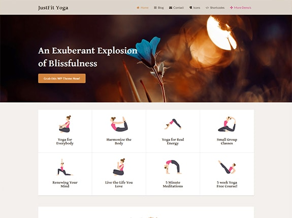 JustFit SEO Optimized WP Theme