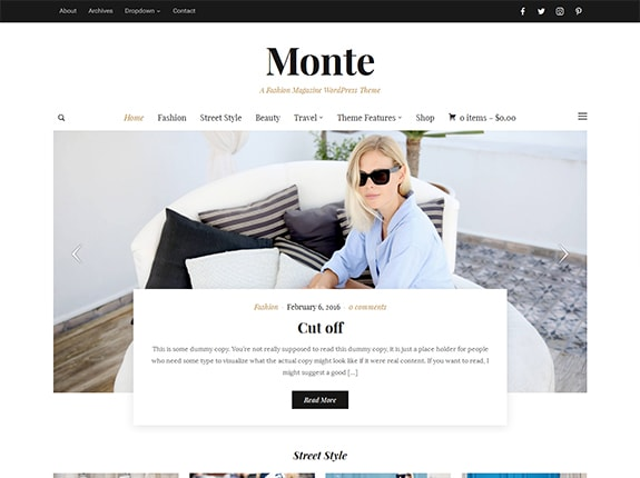 Monte WordPress Theme