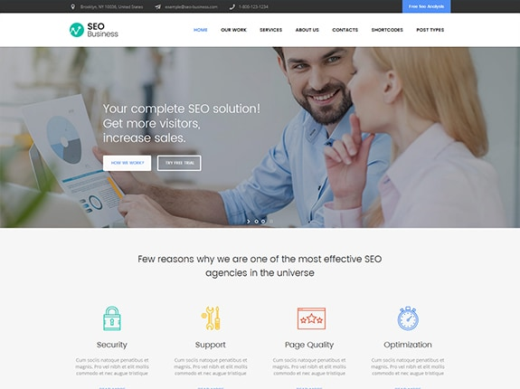 SEO Business WP Theme