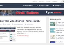 Best WordPress Video Sharing Themes