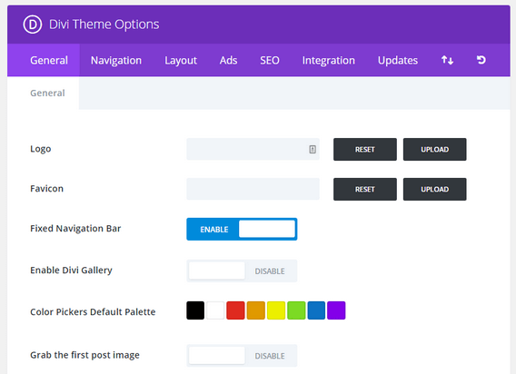 Divi Theme - Theme Options Panel