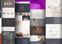 Divi WordPress Theme review