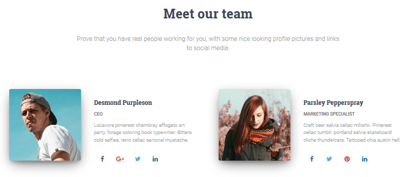 Hestia Pro - Meet the Team Section