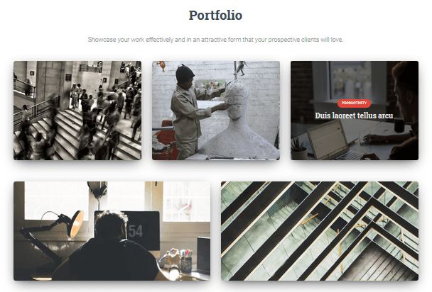 Hestia Pro - Portfolio Section