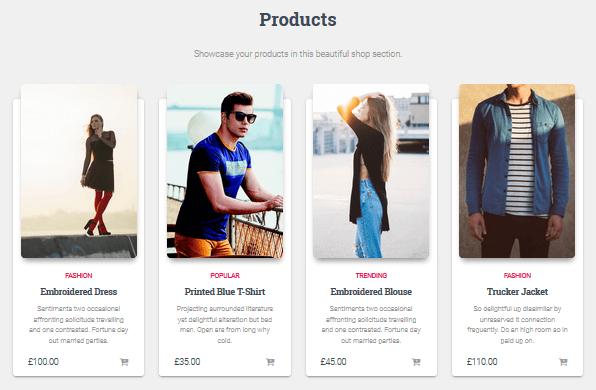 Hestia Pro - Products