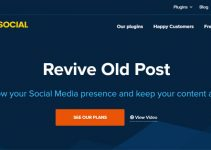 Revive Old Post Plugin review