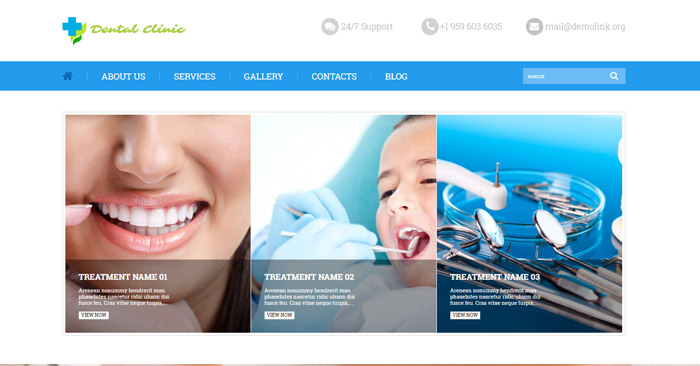 Dental Care WordPress Theme