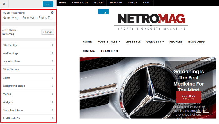 NetroMag - Theme Customizer