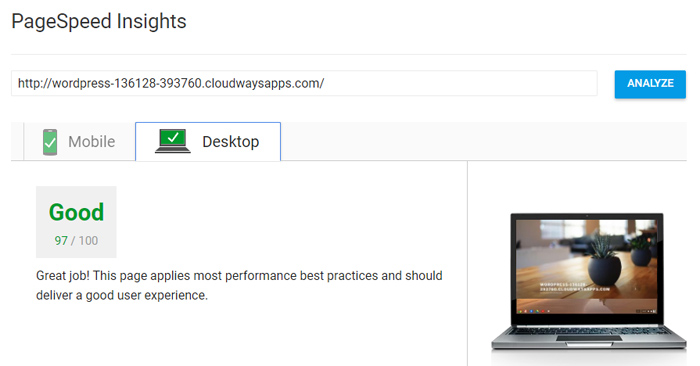 Cloudways PageSpeed Insights test