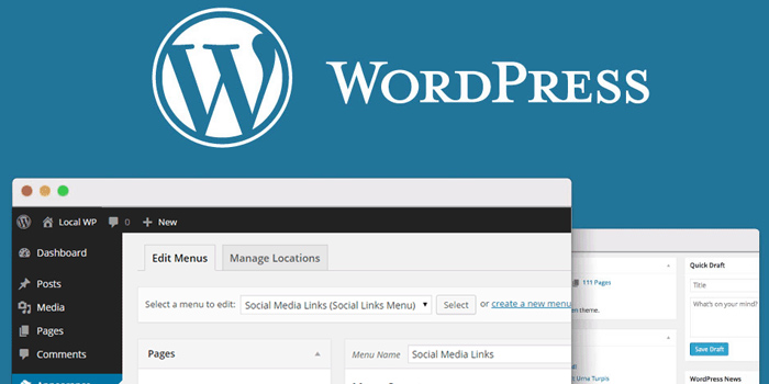 Build WordPress sites for clients