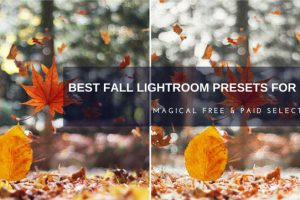 Best Fall Lightroom Presets