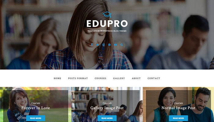 WordPress Theme for an Education Blog